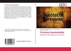 Bookcover of Turismo Sustentable