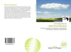 Bookcover of Blechnum Nudum