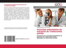 Buchcover von Actividad antioxidante de extractos de Tradescantia pallida