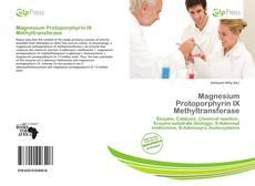 Capa do livro de Magnesium Protoporphyrin IX Methyltransferase