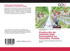Producción de jitomate bajo invernadero en Teziutlán, Puebla的封面