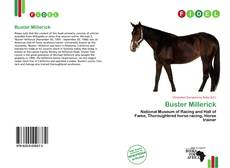 Bookcover of Buster Millerick