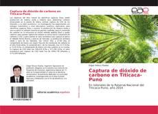 Обложка Captura de dióxido de carbono en Titicaca-Puno