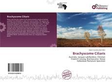 Bookcover of Brachyscome Ciliaris