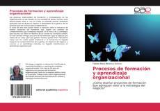 Procesos de formación y aprendizaje organizacional的封面