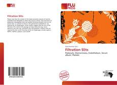 Bookcover of Filtration Slits