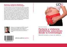 Copertina di Partería y violencia obstétrica: soluciones desde la Criminología