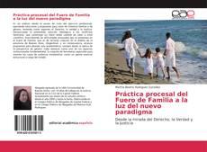 Copertina di Práctica procesal del Fuero de Familia a la luz del nuevo paradigma