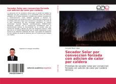 Portada del libro de Secador Solar por conveccion forzada con adicion de calor por caldera