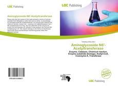 Capa do livro de Aminoglycoside N6'-Acetyltransferase