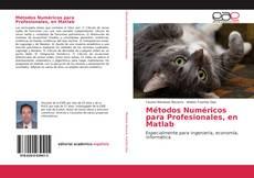 Buchcover von Métodos Numéricos para Profesionales, en Matlab
