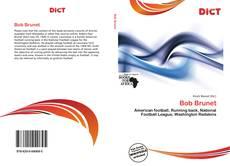 Bookcover of Bob Brunet