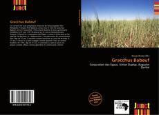 Couverture de Gracchus Babeuf