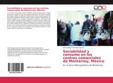 Buchcover von Sociabilidad y consumo en los centros comerciales de Monterrey, México