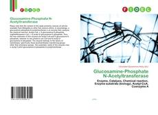 Bookcover of Glucosamine-Phosphate N-Acetyltransferase