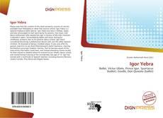 Capa do livro de Igor Yebra