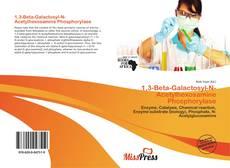 Buchcover von 1,3-Beta-Galactosyl-N-Acetylhexosamine Phosphorylase