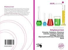 Bookcover of Amylosucrase