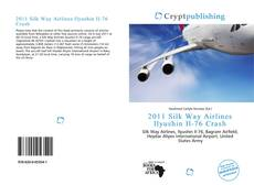 Bookcover of 2011 Silk Way Airlines Ilyushin Il-76 Crash