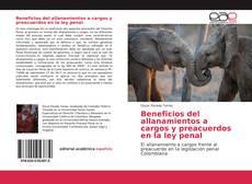 Borítókép a  Beneficios del allanamientos a cargos y preacuerdos en la ley penal - hoz