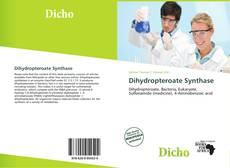 Dihydropteroate Synthase kitap kapağı