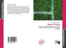 Bookcover of Bojan Trkulja