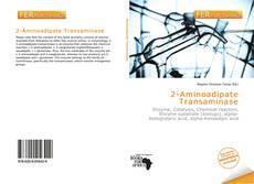 Bookcover of 2-Aminoadipate Transaminase