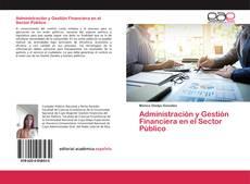 Buchcover von Administración y Gestión Financiera en el Sector Público