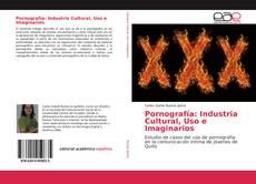 Bookcover of Pornografía: Industria Cultural, Uso e Imaginarios