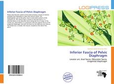 Bookcover of Inferior Fascia of Pelvic Diaphragm