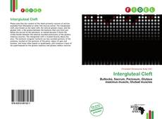 Bookcover of Intergluteal Cleft