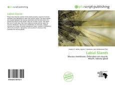 Bookcover of Labial Glands