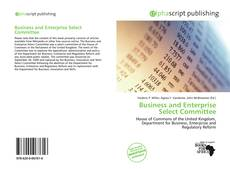 Bookcover of Business and Enterprise Select Committee