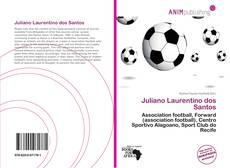 Capa do livro de Juliano Laurentino dos Santos