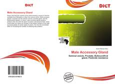 Bookcover of Male Accessory Gland
