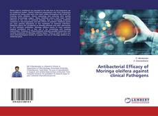 Bookcover of Antibacterial Efficacy of Moringa oleifera against clinical Pathogens
