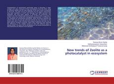 Обложка New trends of Zeolite as a photocatalyst in ecosystem