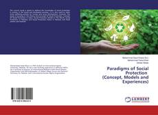Bookcover of Paradigms of Social Protection (Concept, Models and Experiences)