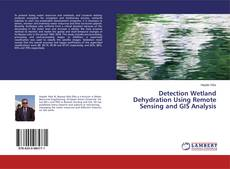 Bookcover of Detection Wetland Dehydration Using Remote Sensing and GIS Analysis