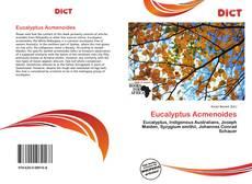 Borítókép a  Eucalyptus Acmenoides - hoz