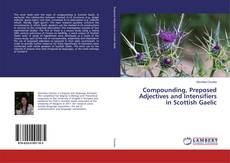 Bookcover of Compounding, Preposed Adjectives and Intensifiers in Scottish Gaelic