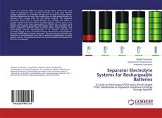 Separator Electrolyte Systems for Rechargeable Batteries的封面