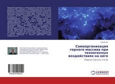 Copertina di Самоорганизация горного массива при техногенных воздействиях на него