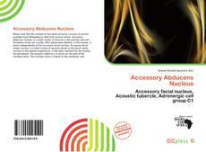 Borítókép a  Accessory Abducens Nucleus - hoz