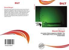 Buchcover von David Weigel