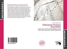 Bookcover of Enterprise Finance Guarantee