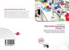 Buchcover von Glycoside Hydrolase Family 13