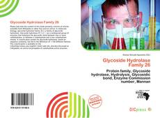 Bookcover of Glycoside Hydrolase Family 26
