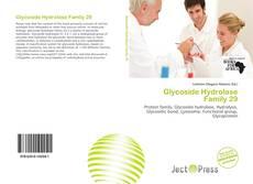 Обложка Glycoside Hydrolase Family 29