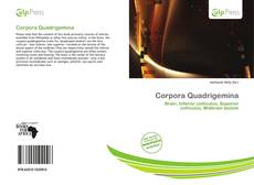 Bookcover of Corpora Quadrigemina